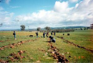 Fig 1. School student volunteers planting in block AA on 'Warrangee' in 1995.