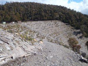 Jindabyne Valve House site after planting