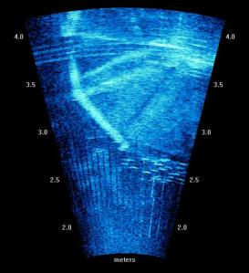 DIDSON (sonar) output, showing experimental screen (Photo courtesy of Craig Boys)