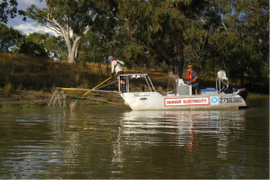 Figure 1: electrofishing during carp removal at rainbow lagoon. (Photo courtesy Peter Gehrke)