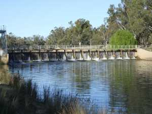 Figure 2. Weir designs such as this one at Balranald can impact on downstream passage of native fish (Photo Jamin Forbes).