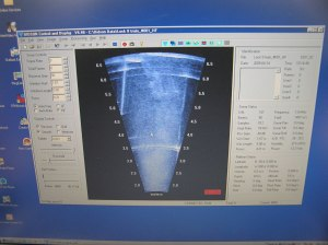 Figure 1. The output of a DIDSON sonar on a laptop. (Photo courtesy Lee Baumgartner NSW DPI)