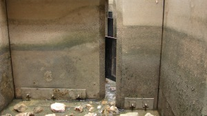 Wall roughness treatment trialled to dissipate energy (Photo courtesy of Martin Mallen-Cooper)