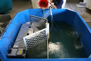 Figure 3. Manipulating turbidity to quantify vaki effectiveness (photo courtesy of Lee Baumgartner)