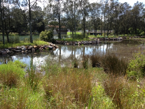 Figure 2.  Gough Whitlam Park January 2015 in 2m tide. (Photo M. Dalby-Ball)