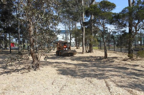 Around 260 cubic metres of recycled wood waste was used to mulch to a depth of 100mm over 2,600 square metres.
