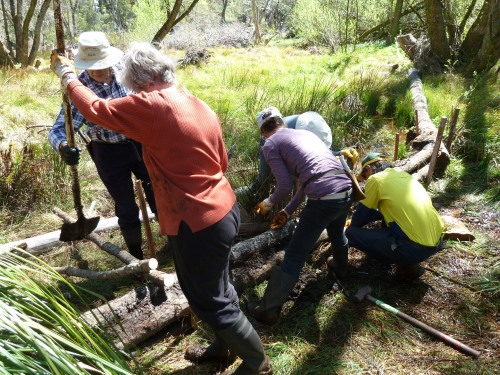 Figure 3: Volunteers building a detention cell from woody debris found on site.