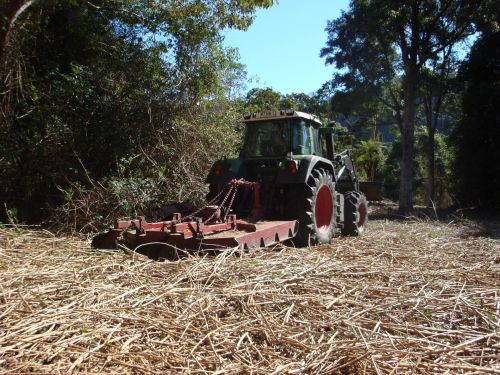 Figure 4. 21 October 2009: Second tractor run slashing lantana