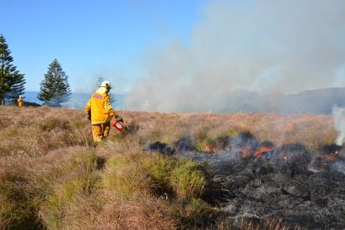 Fig 2. Dalmeny Headlands burn 2015