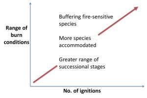 Fig 2. Diagram of mosaic burning approach