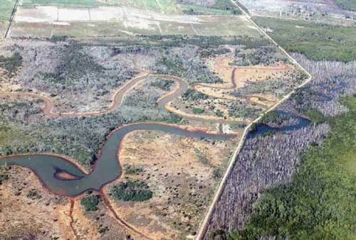 Figure 2a: Aerial view of Firewood Creek area from the 1980s showing extensive grasslands and Melaleuca leucadendra woodlands to the left of the bund wall roadway