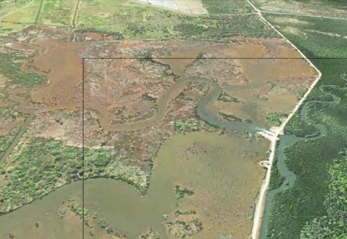 Figure 2b: Aerial view of Firewood Creek area in 2013 with extensive flooded areas, Melaleuca woodland die-back and mangrove development.