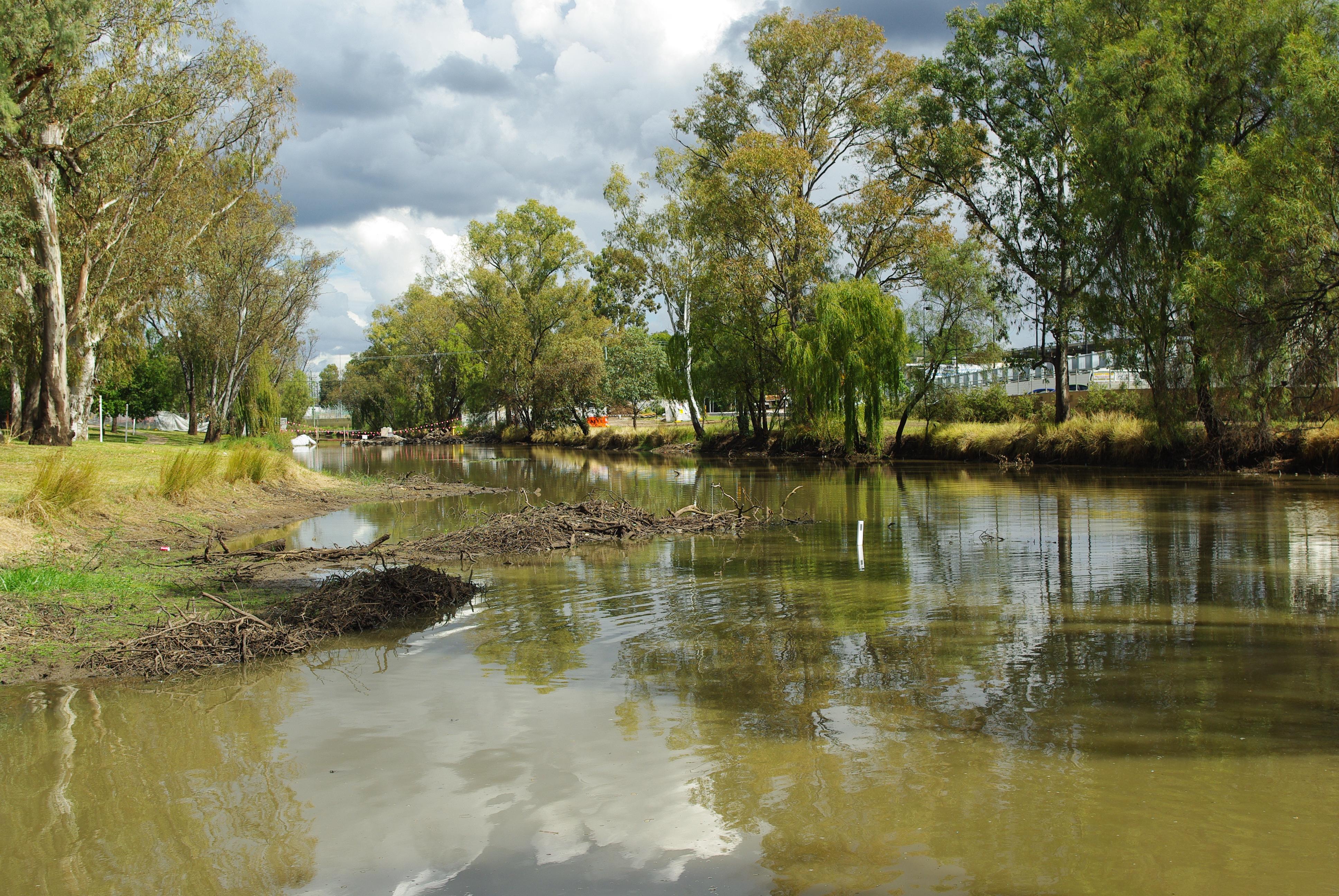 Image 1 - Myall Creek prior to restoration