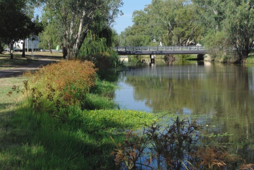 Image 2 - Myall Creek after restoration