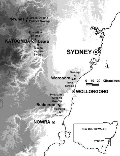 Map of the Sydney Basin region showing four study sites and eight swamps. Greyscale shows altitude gradient.