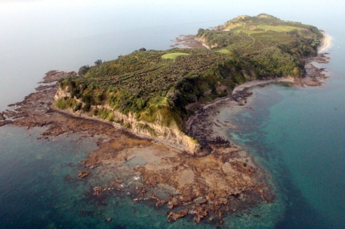 Figure 2 – Aerial view of the Island after completion of the pioneer planting. (Photo by Toby Shanley)