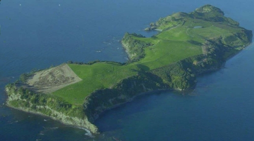 Figure 1 – Aerial view of the Island before planting began. Area to bottom left has been sprayed in preparation for planting (Photo from cover of 2007 Motuora Native Species Restoration Plan).